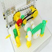 幻·梦课堂-DIY机械原理演示装置-第六届全国大学生机械创新设计大赛-全国二等奖作品