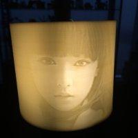 3D打印、浮雕照片艺术灯罩、个性定制