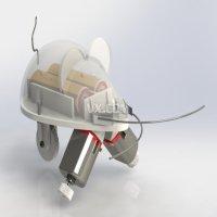 鼠形触须机器人