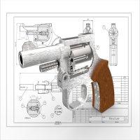 MG 31 DS手枪